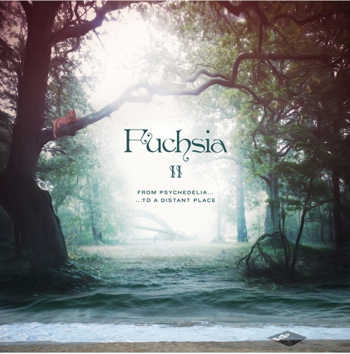Fuchsia II: From Psychedelia to a Distant Place (2013)