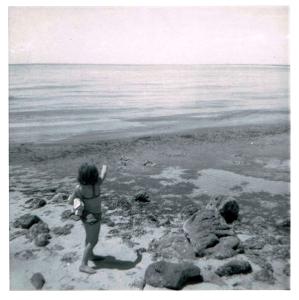 Tracy-point-whale-Dunsborough-1967