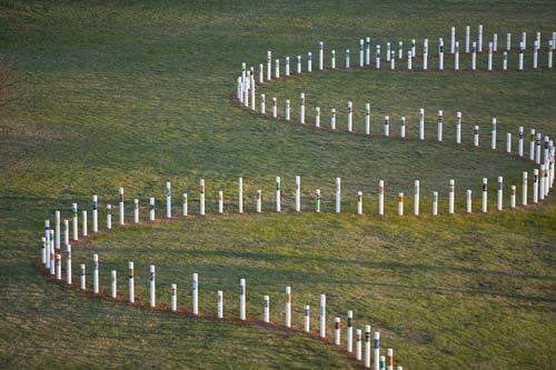sievx-memorial-poles