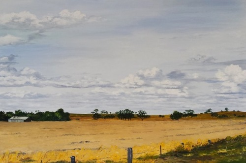 wheat-fields-western-district-m-a-hobbs-bluethumb-art